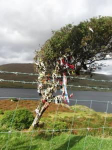 irelandengland2012 910