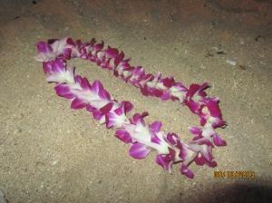 hawaii2013 345