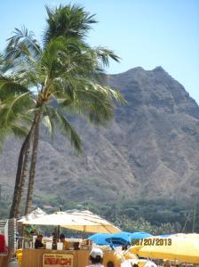 hawaii2013 371