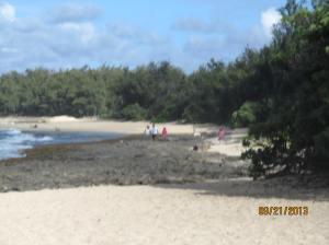 hawaii2013 411