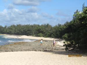 hawaii2013 414