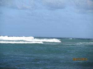 hawaii2013 415
