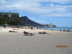 hawaii2013 464