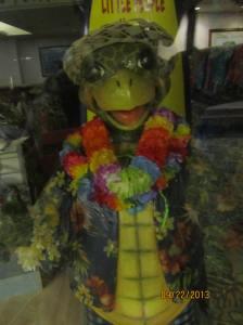 hawaii2013 503