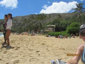 hawaii2013 520