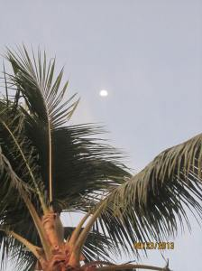 hawaii2013 560