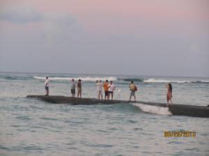 hawaii2013 564