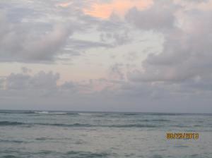 hawaii2013 566