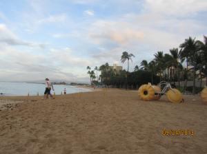 hawaii2013 690