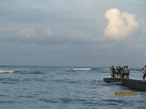 hawaii2013 692