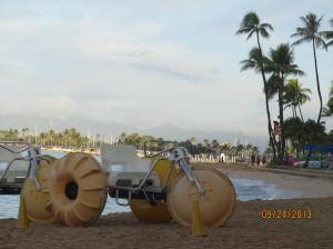 hawaii2013 695