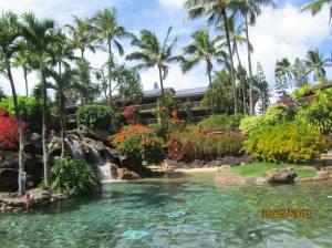 hawaii2013 712