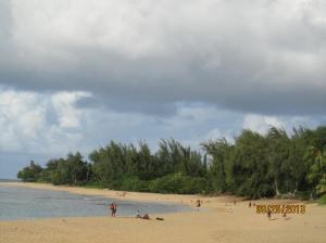 hawaii2013 756