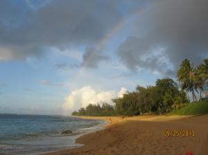 hawaii2013 771