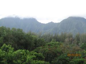 hawaiidisk22013 003