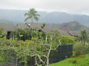 hawaiidisk22013 008