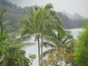 hawaiidisk22013 009