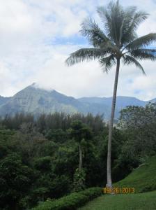 hawaiidisk22013 032