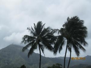 hawaiidisk22013 035