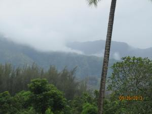 hawaiidisk22013 041