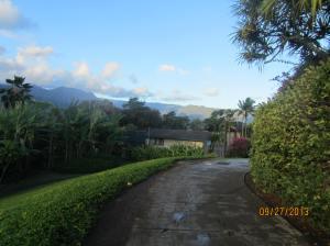 hawaiidisk22013 095