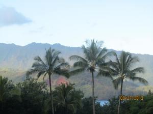 hawaiidisk22013 104