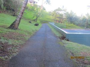 hawaiidisk22013 105