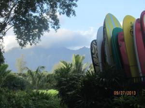 hawaiidisk22013 111