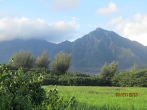 hawaiidisk22013 112