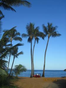 hawaiidisk22013 113