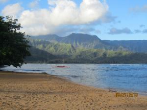 hawaiidisk22013 114