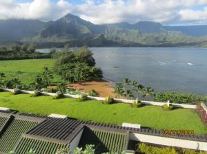 hawaiidisk22013 119