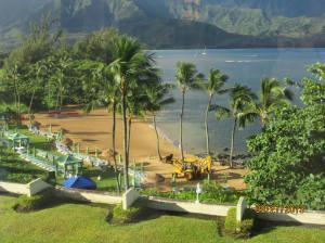 hawaiidisk22013 121