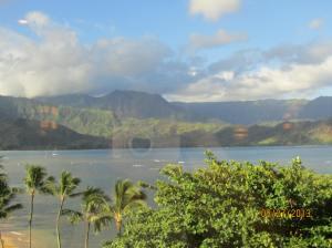 hawaiidisk22013 122