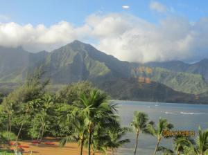 hawaiidisk22013 123