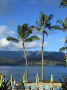 hawaiidisk22013 125