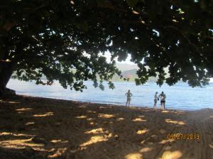 hawaiidisk22013 127