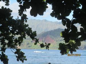 hawaiidisk22013 128