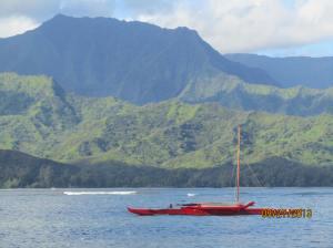 hawaiidisk22013 130