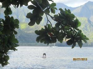 hawaiidisk22013 135