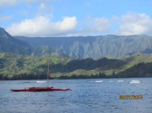 hawaiidisk22013 137