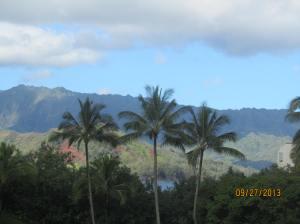 hawaiidisk22013 148