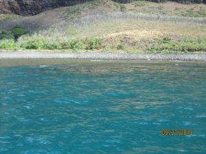 hawaiidisk22013 351