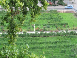 germanyitaly2014 072