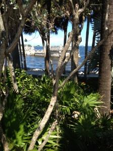 Miami2015 054