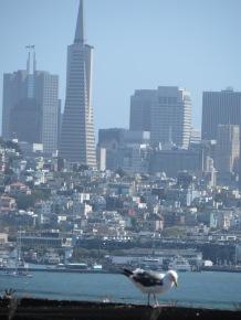 San Francisco august 2016 1514